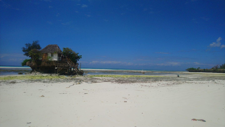 The Rock Zanzibar review