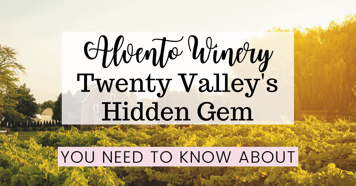 Alvento Winery: Twenty Valley's Hidden Gem You Need to Know About