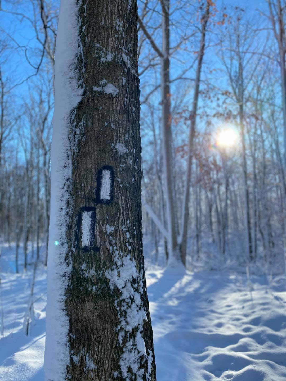 Bruce trail in Winter Niagara